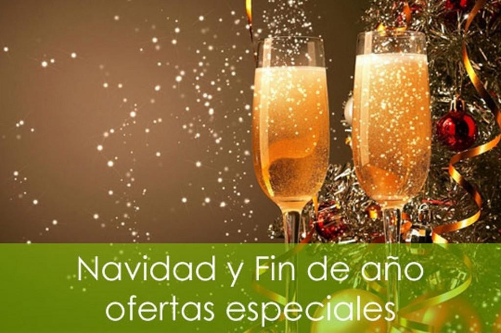 95997 navidad y fin de año ofertas de viajes especiales1 1024x682 Ofertas para vacaciones de navidad